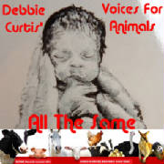 Debbie Curtis Big Band Aid, Voices For Animals, All The Same